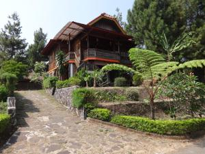 Villa Hadea Kayu