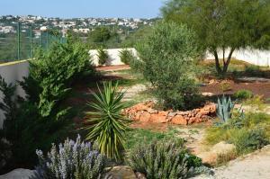 Villa Luna, Case vacanze  Almancil - big - 3