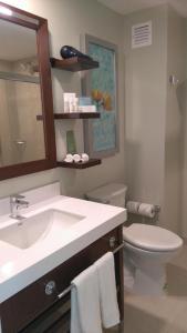 Hampton Inn by Hilton Villahermosa, Отели  Вильяэрмоса - big - 7