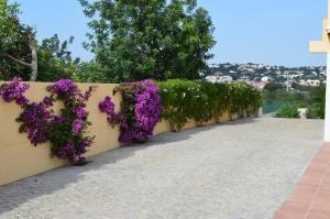 Villa Luna, Case vacanze  Almancil - big - 11