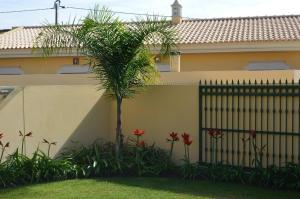 Villa Luna, Case vacanze  Almancil - big - 14