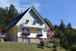 Ferienhaus Günter, Апартаменты  Байрсброн - big - 8