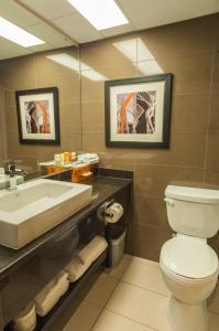 Best Western Plus Village Park Inn, Hotel  Calgary - big - 3