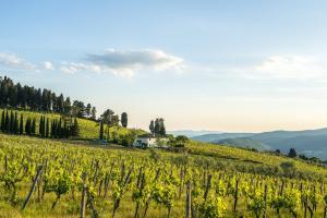 Agriturismo Fattoria Lavacchio, Farm stays  Pontassieve - big - 36