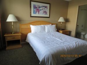 Bulkley Valley Motel, Motelek  New Hazelton - big - 19