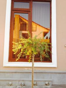 Hotel Salmer, Bed and breakfasts  Tbilisi City - big - 94