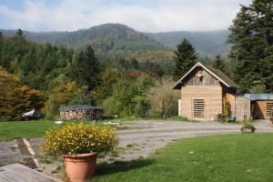 À L'Orée du Bois, Гостевые дома  Oberhaslach - big - 1