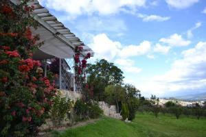 Miravalle Suites, Inns  Paipa - big - 77