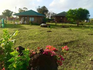 Cabañas Kaituoe, Prázdninové domy  Hanga Roa - big - 17