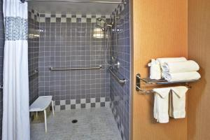 King Mobility/Hearing Accessible Roll in Shower Non-Smoking