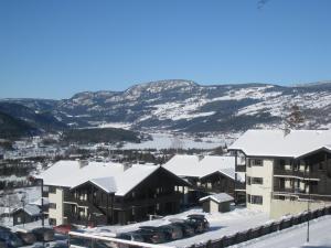 Alpin Apartments Sørlia - Hafjell / Lillehammer