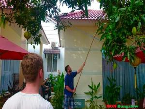 Mon Bungalow, Hotely  Phu Quoc - big - 52
