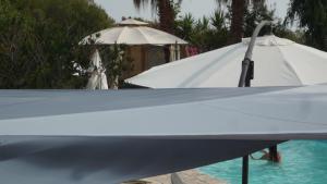 Villa Morosi, Apartments  Favone - big - 98