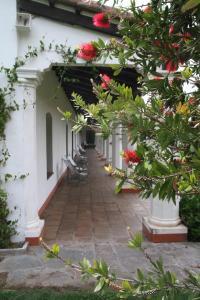 Patios De Cafayate, Hotely  Cafayate - big - 115