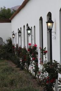 Patios De Cafayate, Hotely  Cafayate - big - 75
