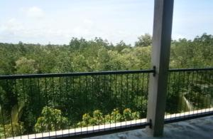 Mangrove Lagoon View, Appartamenti  Negombo - big - 4