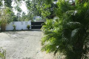Takeshi Inn, Guest houses  Dambulla - big - 24