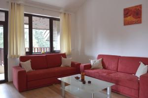 Persey Flora Apartments, Residence  Borovets - big - 41
