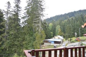 Persey Flora Apartments, Residence  Borovets - big - 29