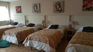 Coosan Cottage Ecolodge Hotel, Отели  Атлон - big - 5