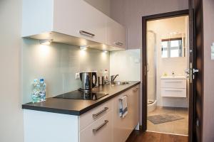Cracow Apartaments, Apartmány  Krakov - big - 18