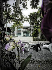 Paragon Inn, Отели  Лат-Крабанг - big - 65