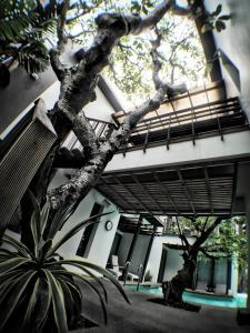 Paragon Inn, Отели  Лат-Крабанг - big - 72