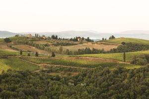 Quercia Al Poggio, Фермерские дома  Барберино-Валь-д'Эльса - big - 67