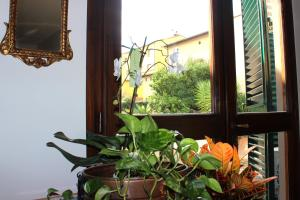 Casa per Ferie Regina Santo Rosario, Bed and Breakfasts  Florencie - big - 35