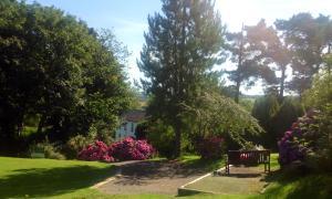 Priskilly Forest Country House, Kúriák  Fishguard - big - 19