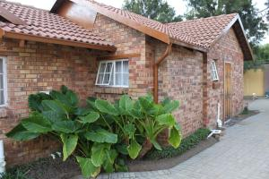 Timosha Guest House, Pensionen  Kempton Park - big - 16