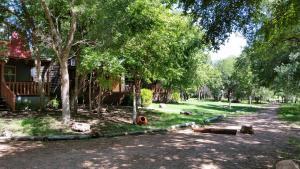 Olive Cabin, Lodge  Fredericksburg - big - 2