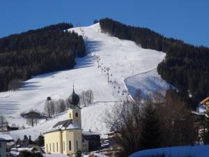 Alpenappartements Hollin