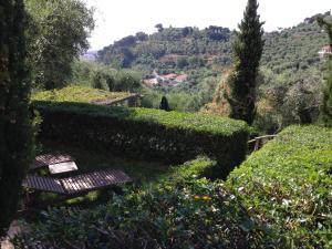 Agriturismo Borgo Muratori, Bauernhöfe  Diano Marina - big - 14