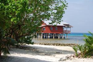 Imagination Island, Lodges  Gizo - big - 103