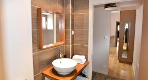 Appart' Monts d'Or, Apartmány  Lyon - big - 9