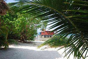 Imagination Island, Lodges  Gizo - big - 89