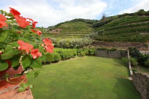 Agriturismo Buranco, Фермерские дома  Монтероссо-аль-Маре - big - 16