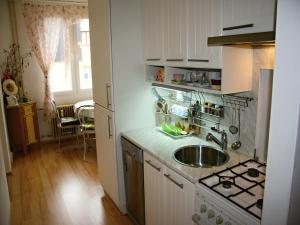 Apartment Gagarinova, Apartments  Karlovy Vary - big - 13