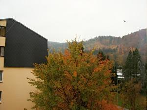 Apartment Gagarinova, Ferienwohnungen  Karlsbad - big - 19