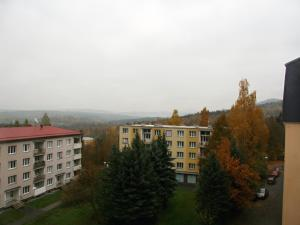 Apartment Gagarinova, Apartments  Karlovy Vary - big - 16