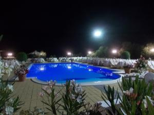 Uliveto Garden, Bed & Breakfast  Bagnara Calabra - big - 16