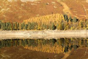 Haweswater Hotel (5 of 39)
