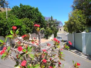 Avatara Bed & Breakfast, Penziony  Kapské Město - big - 14