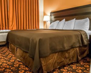 Pokój typu Standard z łóżkiem typu king-size – dla palących