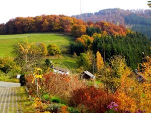 Ferienwohnung Bäumner, Apartmány  Bad Berleburg - big - 80