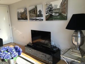 Pinnacle Residences - Central Cambridge, Apartmanok  Cambridge - big - 66