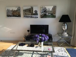Pinnacle Residences - Central Cambridge, Apartmanok  Cambridge - big - 71