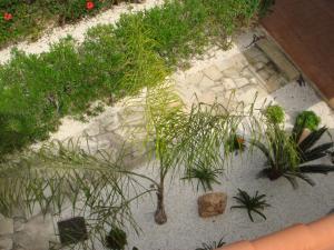 Villa Anna Maria, Vily  Coral Bay - big - 49