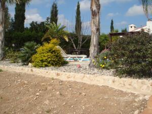 Villa Anna Maria, Vily  Coral Bay - big - 45